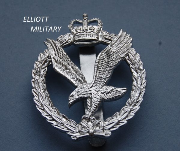 badge with eagle below a crown within a wreath