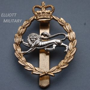 badge with lion below a crown inside a wreath