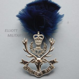 two piece badge with a scroll below a stags head and a thistle and crown with feather hackle