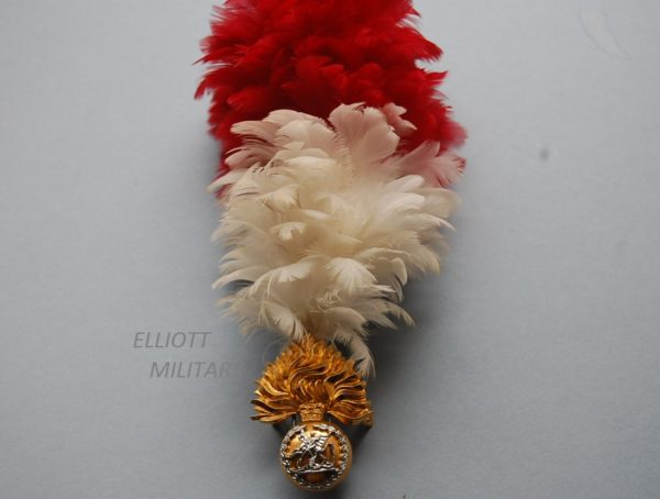 badge with George and the dragon below a crown on a flaming bomb with feather hackle