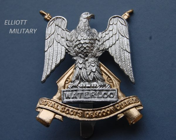 badge with eagle in front of crossed rifles standing above a scroll