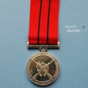 medal showing crossed assault rifles